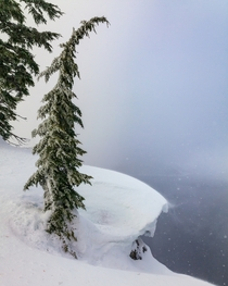 Cornice and Fog  Crater Lake