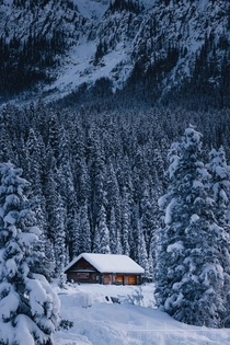 Cosy Cabin in Banff National Park Canada