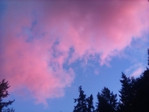 Cotton candy skies taken to another level