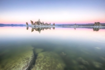 Cotton candy sunset at Mono Lake Yellow Bird Photography
