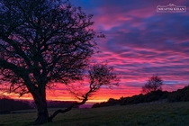 Cracker of a sunset at Pleasington Blackburn Lancashire UK