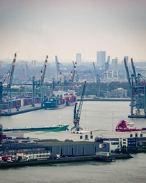 Cranes at work in the Port of Rotterdam