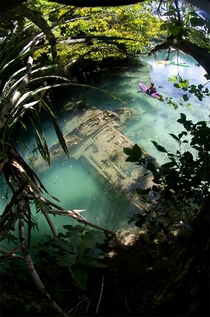 Crashed and sunken plane