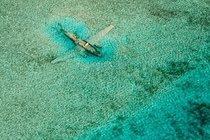 Crashed Curtiss C- aircraft near Normans Cay Exumas Bahamas  photo by Bjorn Moerman