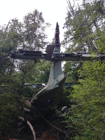 Crashed plane from WW near Tofino BC Sadly much of it is covered in graffiti