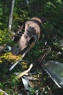 Crashed WWII era RCAF C- in the woods