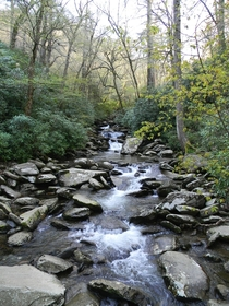 Creek in the Great Smoky Mountains