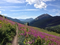 Crested Butte CO