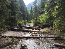 Crossing the creek on the way to Donut Falls in Big Cottonwood Canyon UT