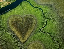 Cur de Voh a naturally formed heart in the mangroves of New Caledonia South Pacific -