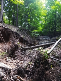 Damage caused by flood waters after a beaver dam collapsed Ontario Canada  OC