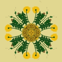Dandelion  Kind people asked to see more of my stylised botanical designs