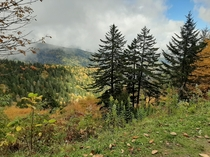 Dark clouds and sunlight in the same picture Taken near Clingmans Dome TN x