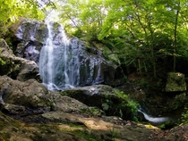 Dark Hollow Falls - Shenandoah Natl Park VA