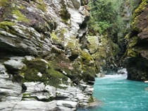 Dart River Mt Aspiring National Park NZ