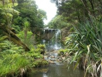 Day trip to see Mokoroa Falls So much to see in New Zealand you should come visit