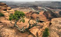 Dead Horse Point State Park Utah  Photo by Anna Anikina