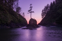 Dead Mans Cove at blue hour Cape Disappointment WA