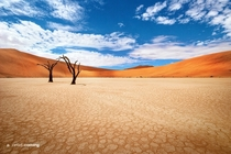 Dead Valley in Namibia Africa Photo by Jarrod Castaing x-post from rDesertPorn