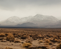 Death Valley In The Winter