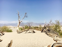 Death Valley NV