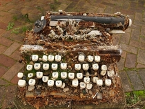 Decayed and abandoned typewriter I dont think its salvageable