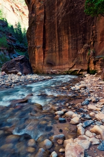 Deep in the Narrows of Zion NP