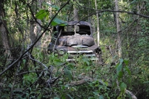 Derelict truck in the woods of southern Missouri