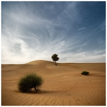 Desert Poetry Dubai UAE