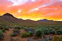Deserts are pretty too Especially at sunset Especially in Nevada