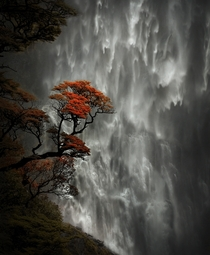 Devils Punchbowl Falls Arthurs Pass National Park South Island New Zealand