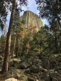 Devils Tower   x