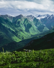 Did you know that Kyrgyzstan looked like this