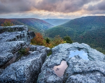 Different Hues Appalachian Region Photo by Tim Williams