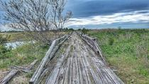 Dilapidated boardwalk in NY
