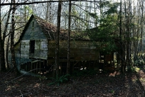 Dilapidated cabin in the Canadian woods