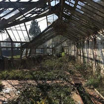 Dilapidated greenhouse at abandoned hospital South Wales