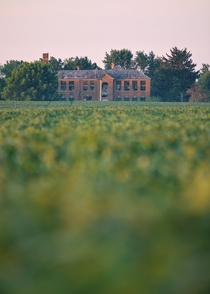 Dilapidated school building surrounded by soybean fields
