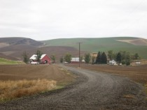 Dirt road leading to Waitsburg WA