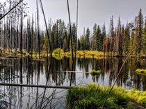 Dismal Swamp in Elmore County Idaho sitting at  ft in Elevation