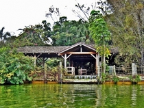 Disneys Discovery Island Lake Buena Vista Florida