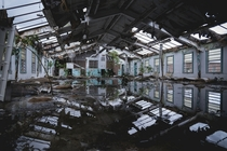 Dormitories being reclaimed by nature at an abandoned prison in Florida