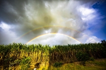 Double Rainbow over Cane Fields Pamplemousses Mauritius