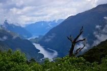 Doubtful Sound Fiordland National Park New Zealand  OC