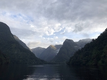 Doubtful Sound New Zealand  x