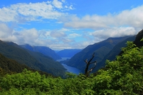 Doubtful Sounds New Zealand