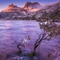 Dove Lake near Tasmanias Cradle Mountain Credit  Paul Fleming