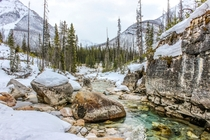 Down by the river at the beginning of Marble Canyon Kootenay Park Canada