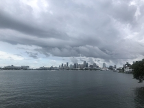 Down town Miami from the Venetian causeway