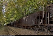 Dozens of narrow gauge hopper cars sit and rust after being seemingly abandoned for nearly half a century